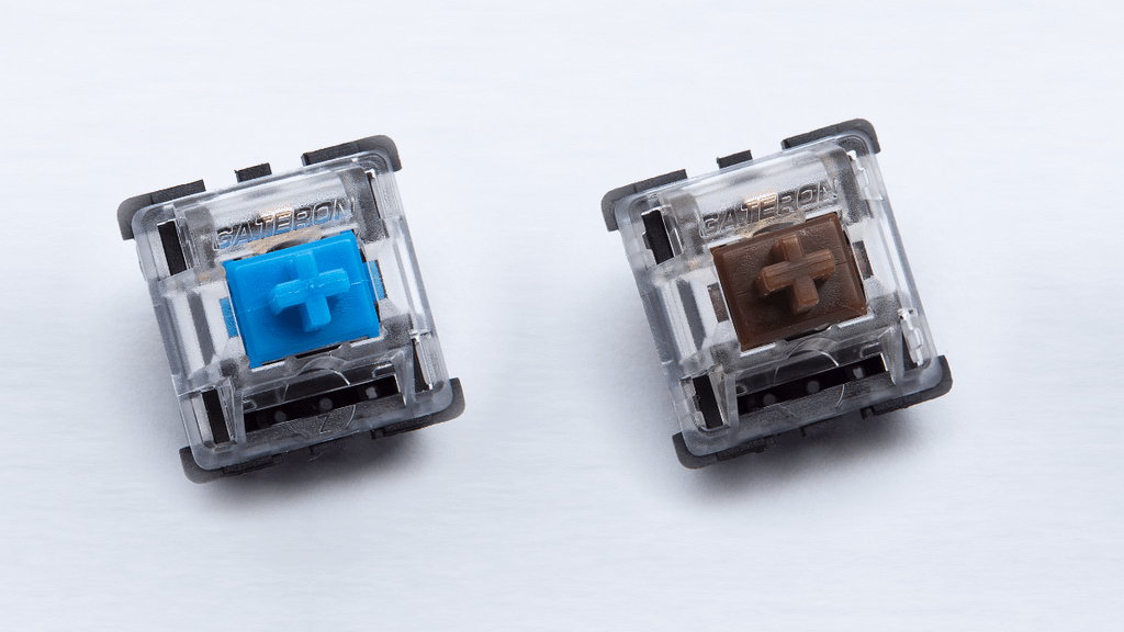 Gateron Blue Brown switches from Input Club